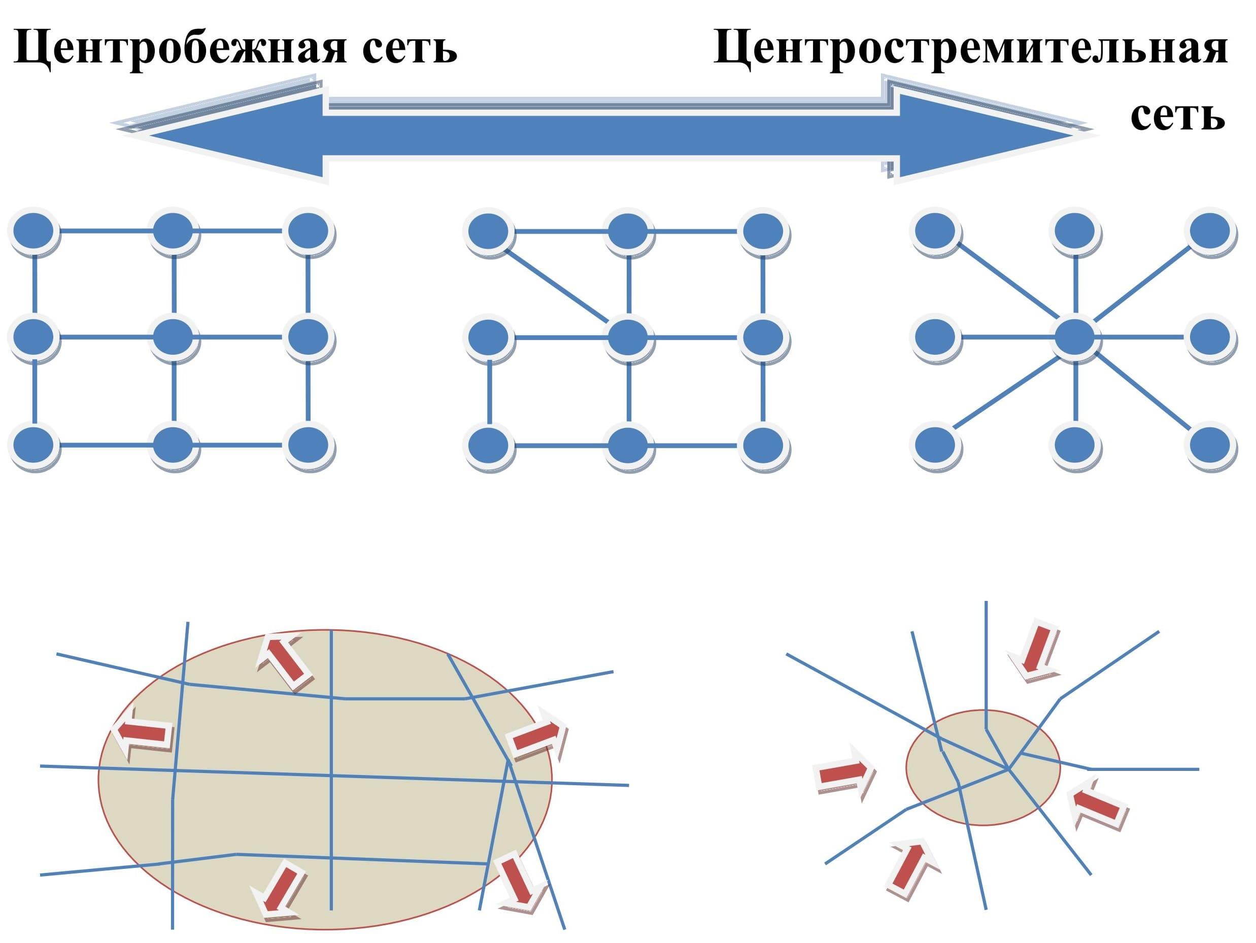 Центробежная и центростремительная сети