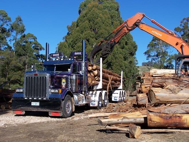 Перевозка леса и пиломатериалов